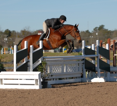 DFG Stables Photos